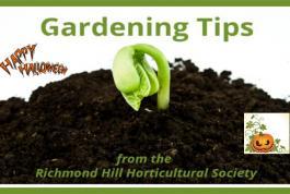 Gardening Tips - Halloween Style